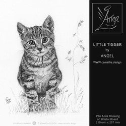 LITTLE TIGGER