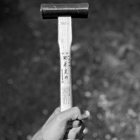 Leader as 'No Mistakes' Hammer