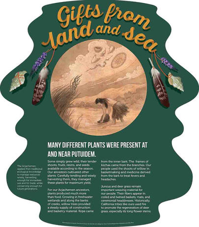 Gifts from Land and Sea