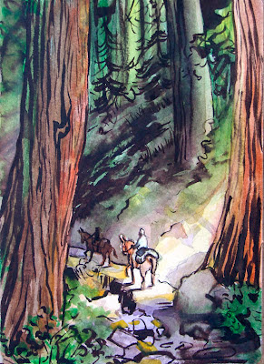 Sequoia Trail 1