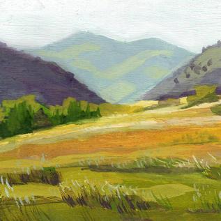 Muskrat Meadows