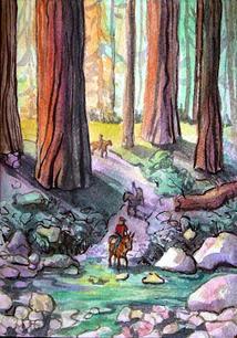 SequoiaTrail2.jpg