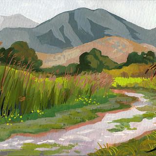 Cherry River Trail1_WEB.jpg