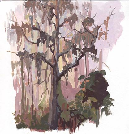 Lettuce Lake Tree