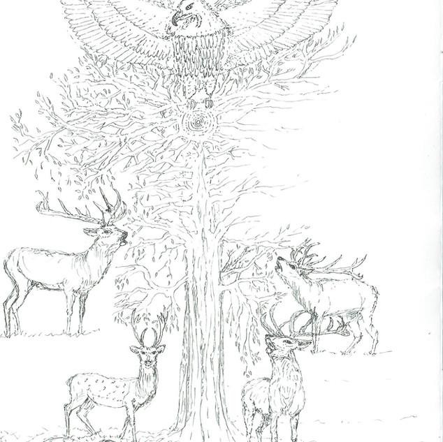dessin-arbre du monde - copie.jpg