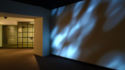 John+Carpenter+Shadows+2011+Install+view+Young+Projects+view