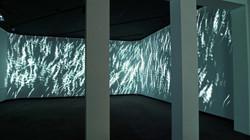 John+Crpenter+Fields+Install+View+LR