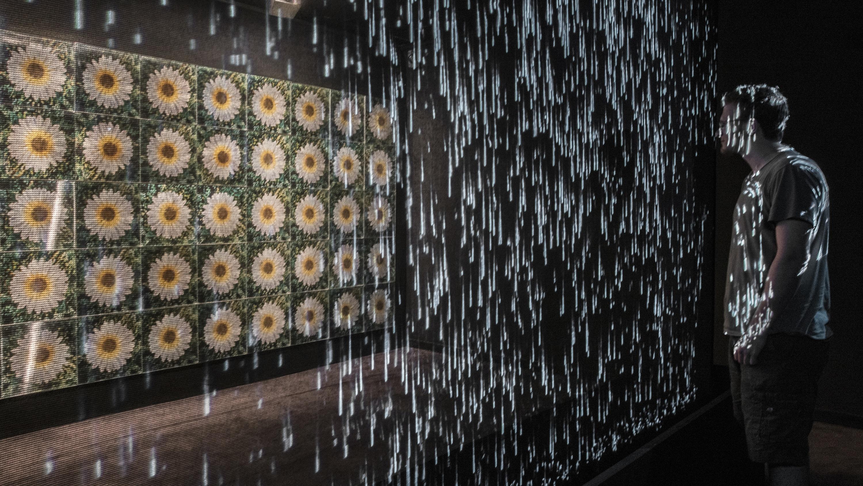 WarholxAnadol - Rain Machine
