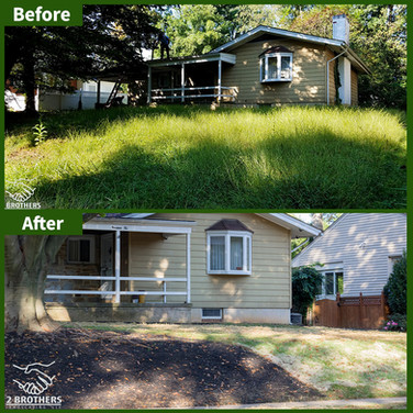 grass cut before and after