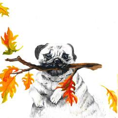 Autumn - 6
