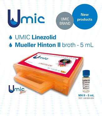 UMICflyer EN.png