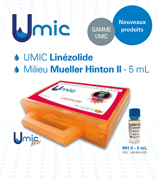 UMICflyer.png