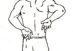 kidney exercise.jpg