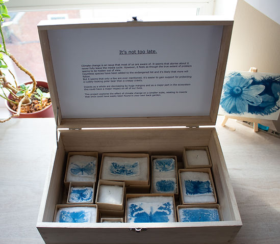 wooden box containing 11 boxes most of which contain blue prints of butterflies on tissue paper.