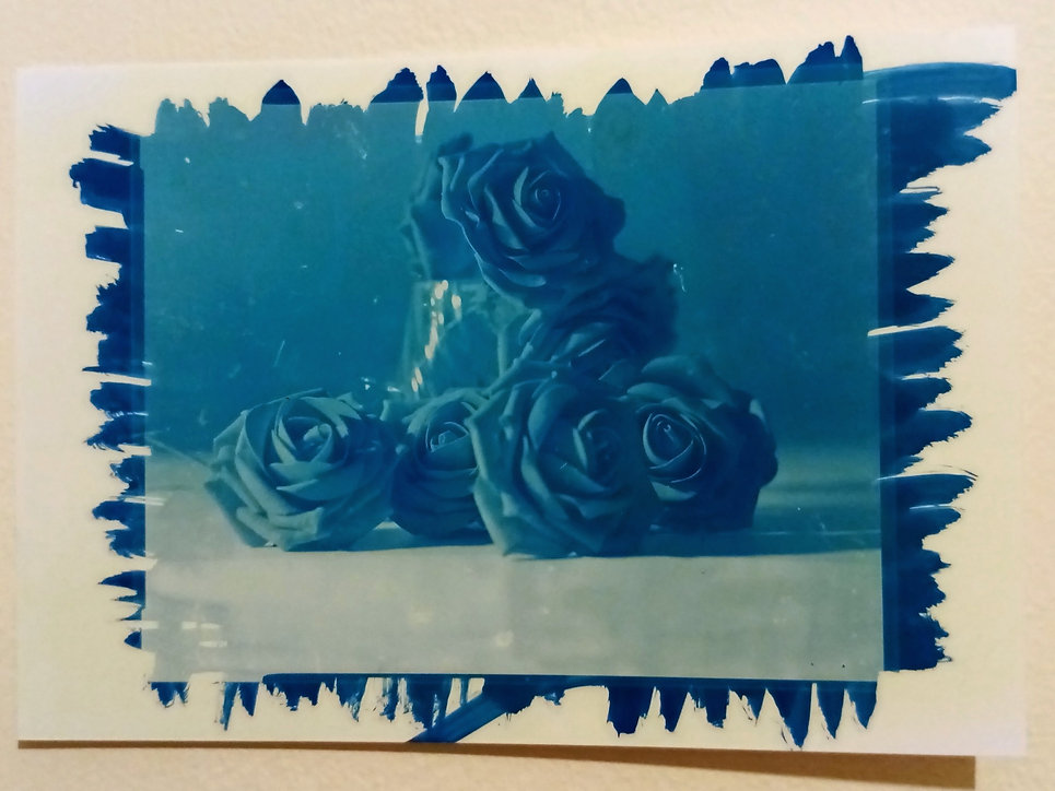 Cyanotype still life of roses and flower vase