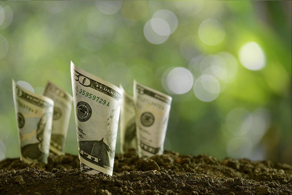 rolled-bank-notes-on-soil-PGLPRC3.jpg