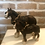 Thumbnail: Small Shire Horse