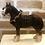 Thumbnail: Large Shire Horse