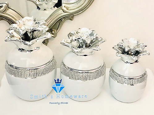 White Pineapple Canister Set