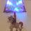 Thumbnail: Unicorn LED wall sticker