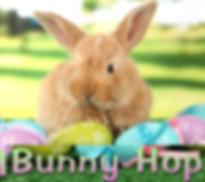 bunny hop2.png