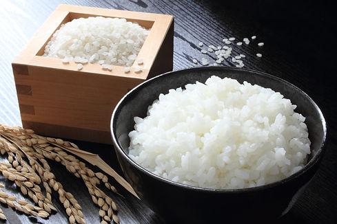 米の写真.jpeg