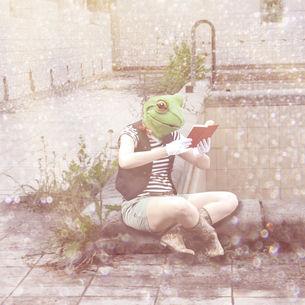 Der Bücherfrosch