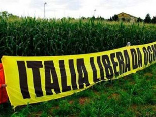 Iniziativa Europea per liberare dagli OGM la regione Alpina e Adriatica