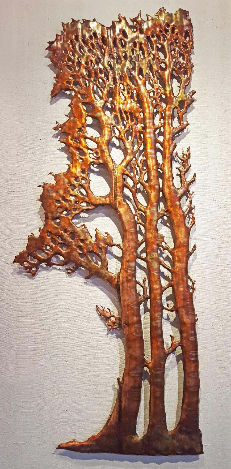 Treeumverate