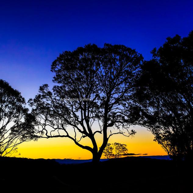 Sunset Lochiel