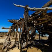 Beach Shelter, Tanja