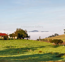 Bega Valley Farm W.jpg