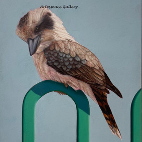 'Kookaburra on Fence'