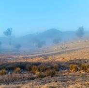 Breakthrough Bega Valley