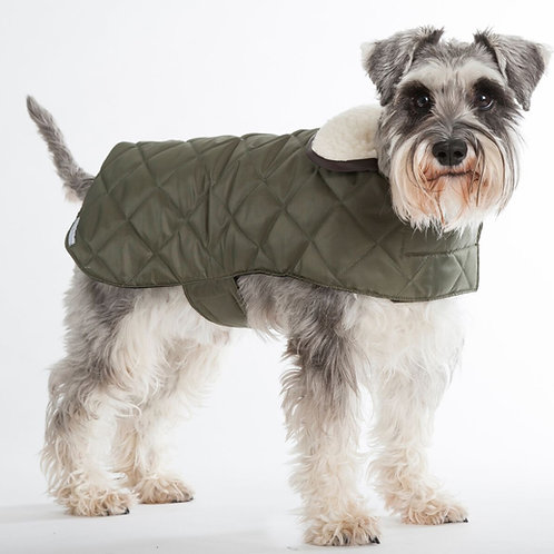 Hund mit Steppmantel Olive von Mutts & Hounds I Kläfferkram