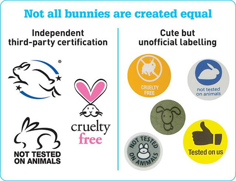 How to Decode Cosmetic Labels for a Cruelty-Free Lifestyle
