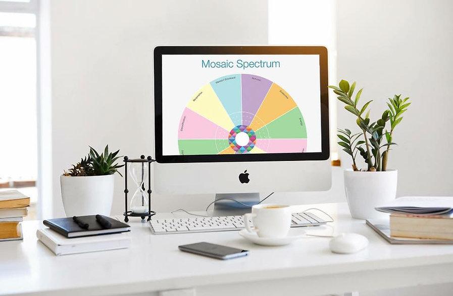 VM Desk Photo.jpg