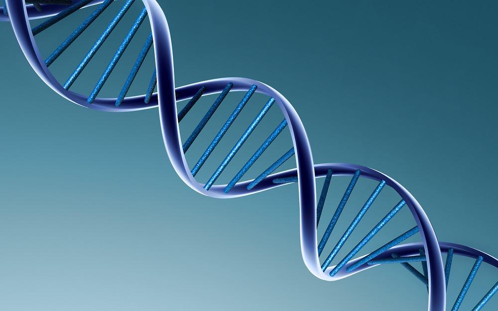 Arthrite ou arthrose? - Brin d'ADN illustrant le fait que la maladie est héréditaire