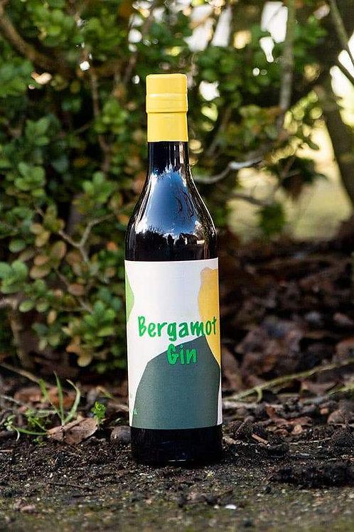Bergamot Gin 41% 50 cl.