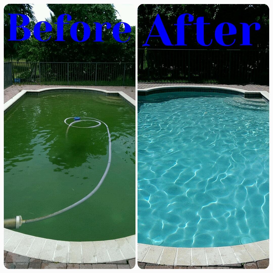 Pool Clean Up