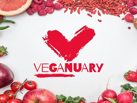 How did I find Veganuary 2019?