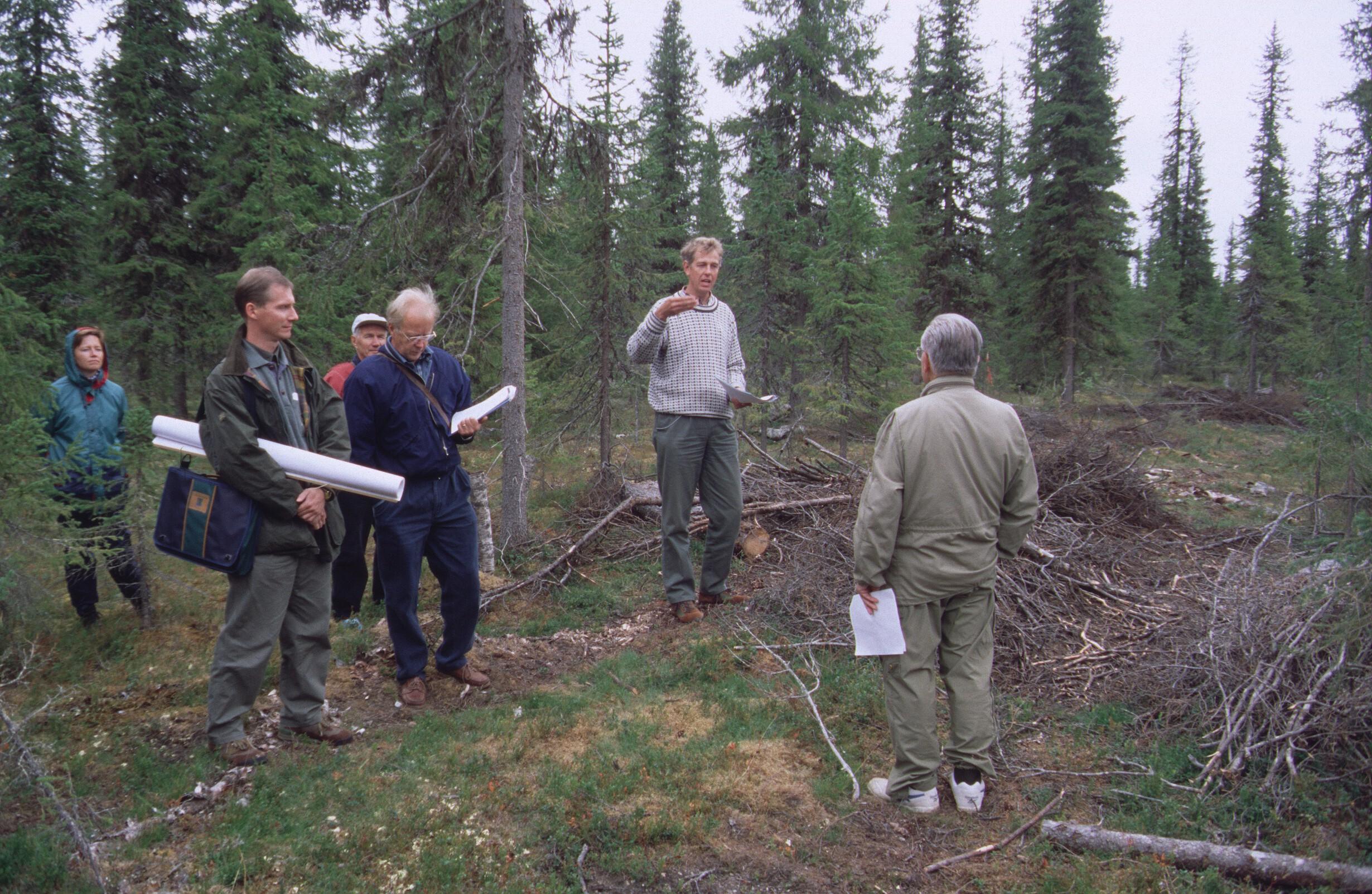 Retkeily, Lapin metsänhoitajat 70 v, hlö, Ojala, Erkkilä, Sandström, Pouta, Siren,