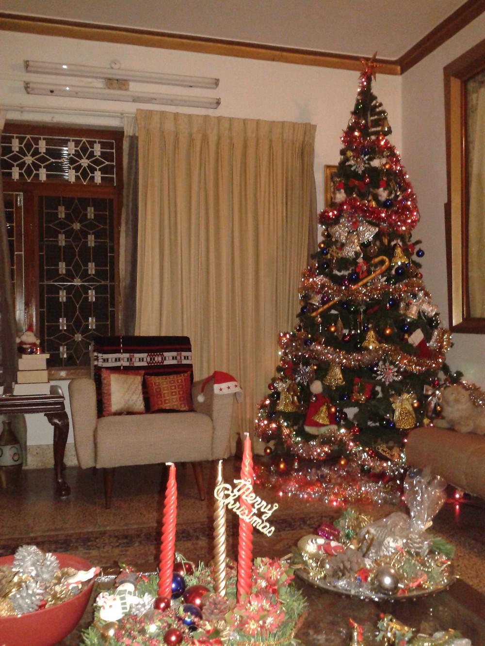 Christmas tree, Kerala, India Photo credit: Jmnooranal
