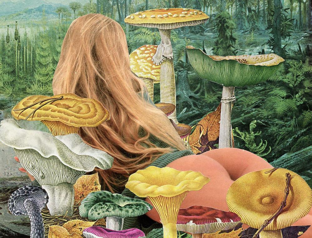 collage girl mushrooms