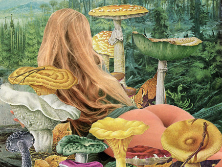 Preparation, Set and Setting: The importance of planning a psychedelic experience