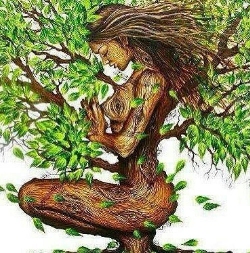 draw women tree ecofeminism