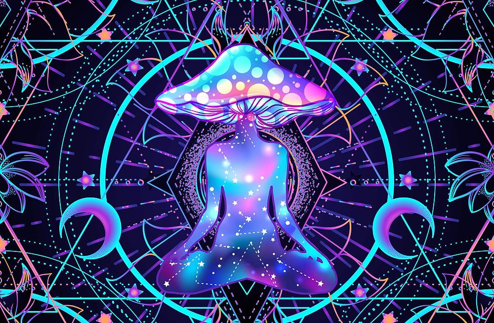 pattern geometrical mushroom psychedelic