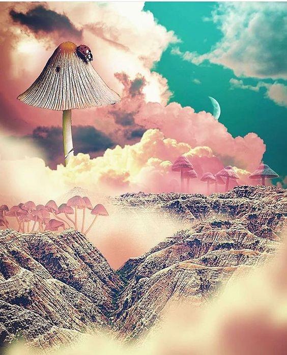 artwork mushroom clouds