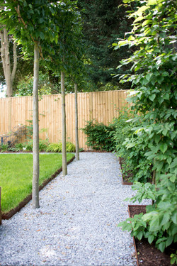 Pleached alley