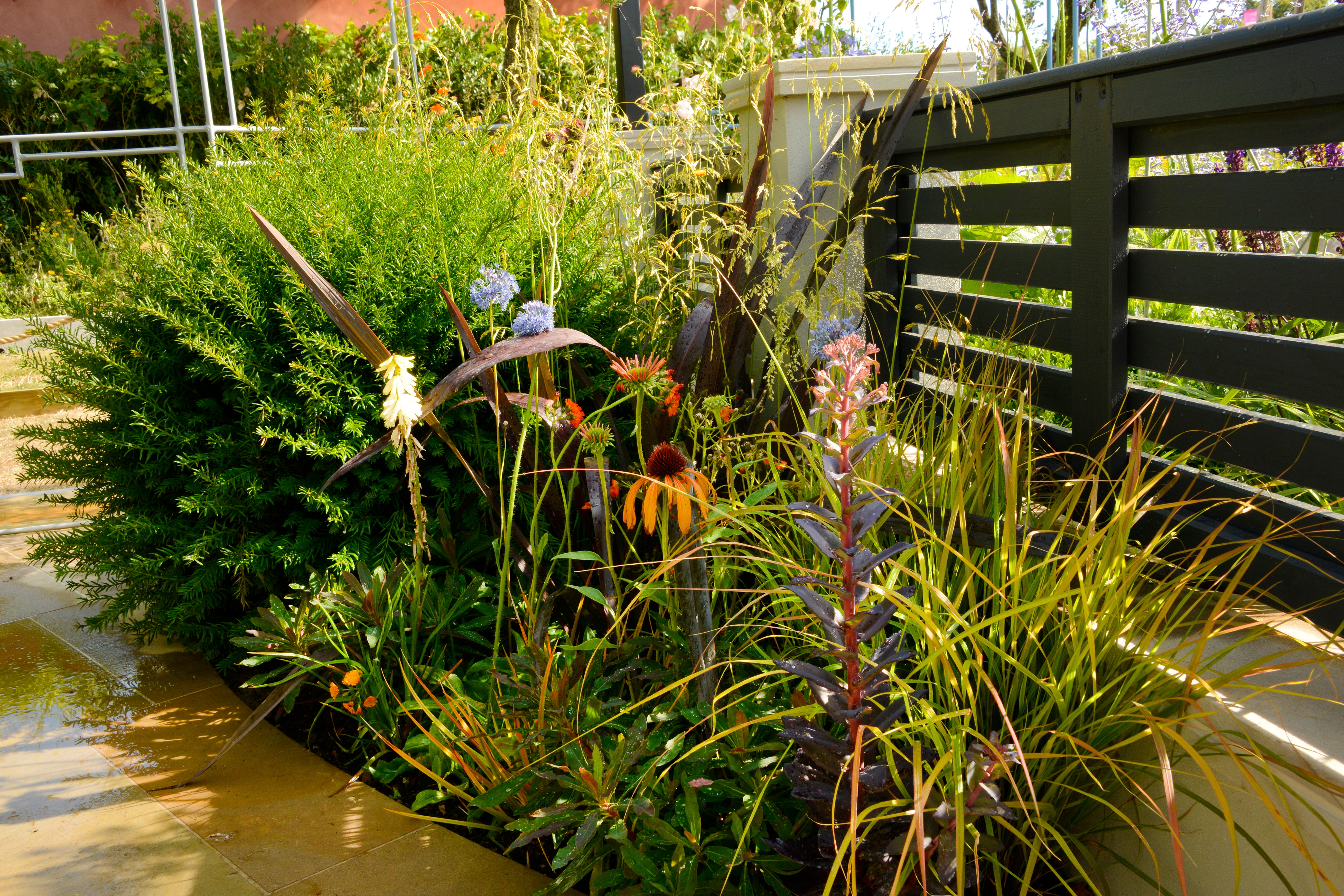 Garden Designer London & Surrey - Alladio Sims Garden Landscape Design
